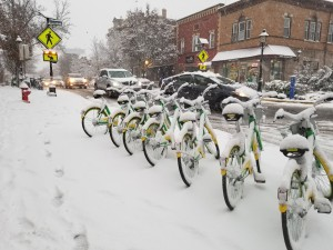 Shared Lime bicycles waiting for riders, Metuchen, New Jersey.