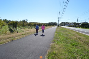 A trail in Cape May County
