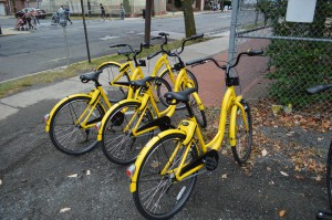 Dockless bicycles provided by ofo.